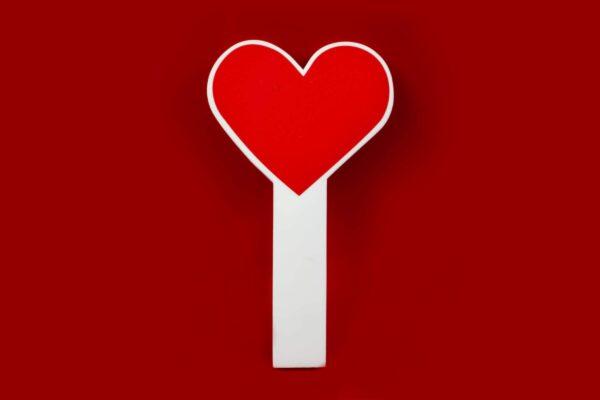 paletta cuore